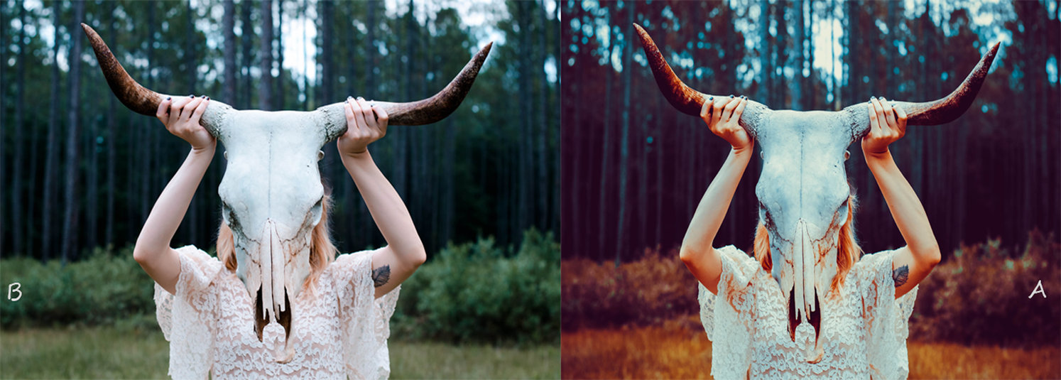 free_horns__lightroom_preset