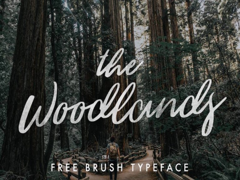 the_woodlands_cover
